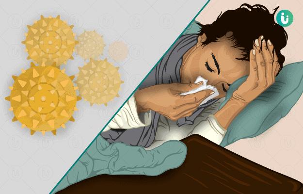 परागज ज्वर (एलर्जिक राइनाइटिस)